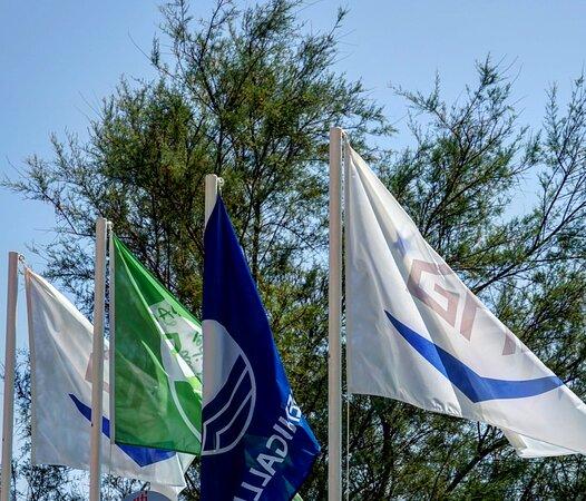 Senigallia, Italia: Le nostre bandiere