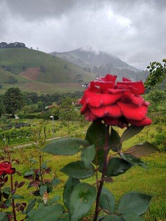 State of Minas Gerais: Até dias chuvosos o dia fica lindo no Recanto das Videiras!