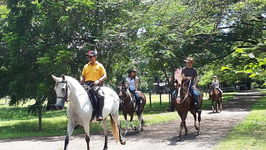 Portegolpe, Costa Rica: Small group and private rides are our specialty.
