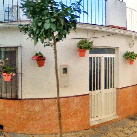 Beautiful #Estepona full of flowers