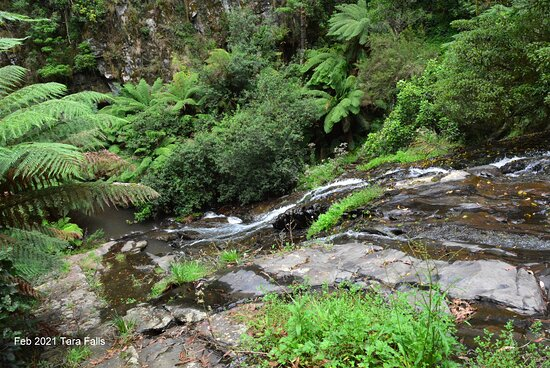 Tarra Valley, Úc: Tarra Falls