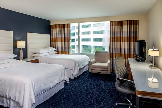 Double/Double City View Guest Room