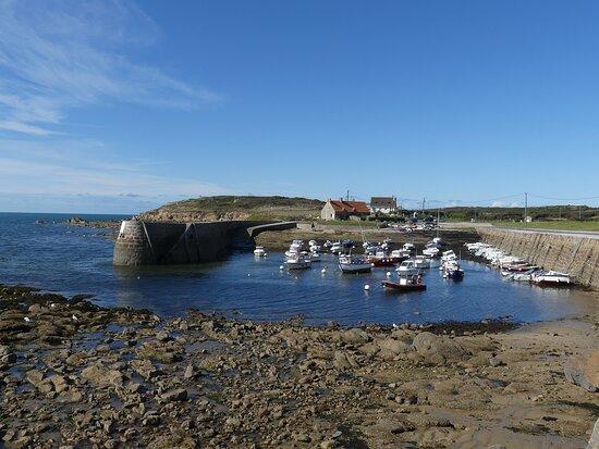 Port Lévi, a 5 min drive from the campsite or a 30 min walk on the coastal path