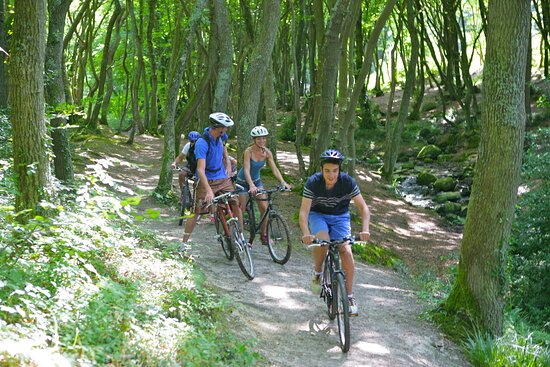Mountain Biking in the nearby forest
