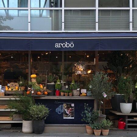 Hiroo Arobo