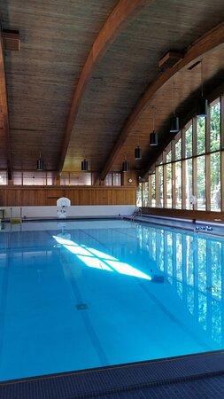 Onaway, MI: Heated, indoor pool