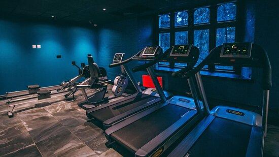 Ruthin Castle Hotel Ruthin Gym