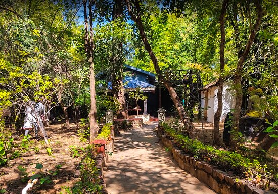 Chhattisgarh Theme Cottage