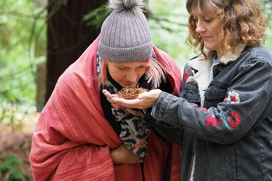 There are a number of mindfulness skills I can teach in the Forest and some lovely 'off the beaten track' spots I can take you to.