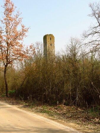 La torre vista dalla carrareccia di via della Torre