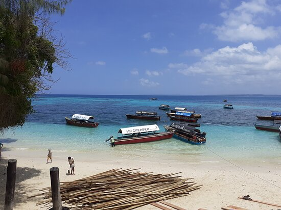 Zakatour Zanzibar
