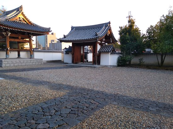 Nara, Japan: 境内で