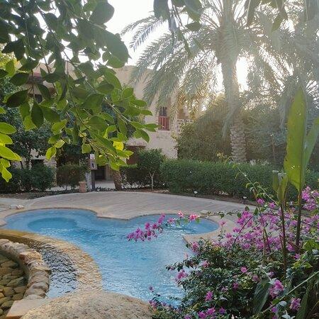 Amazing Resort 🌞