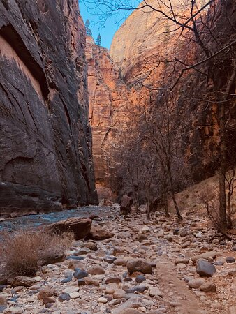 Zion and the narrows