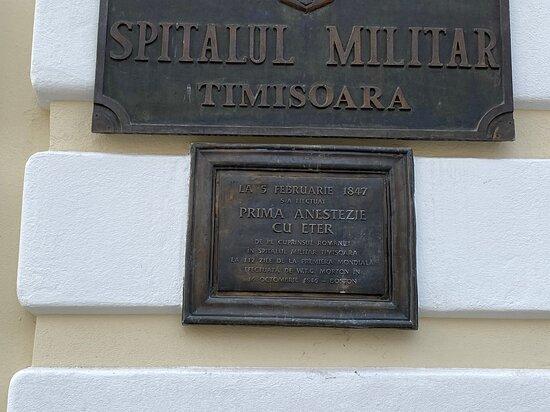 Pedestrian Area Of Timisoara