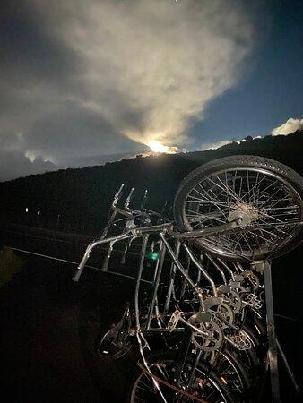 Ảnh về The Original Classic Maui Downhill Bike Tour *9am Group Edition