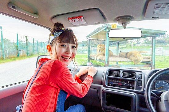 Iwate Safari Park