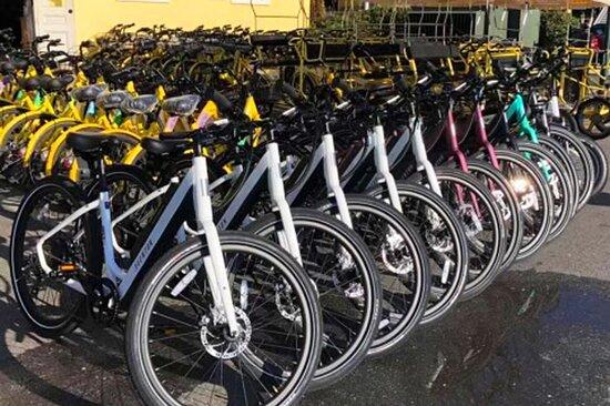 Cape Island Bikes