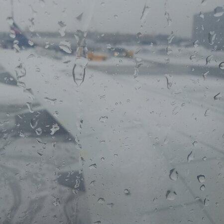 Shermetyevo, Ρωσία: Последний день зимы-2021 в SVO