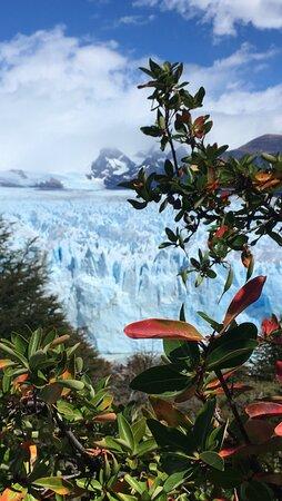 Glaciar Perito Moreno, Vista desde pasarela.