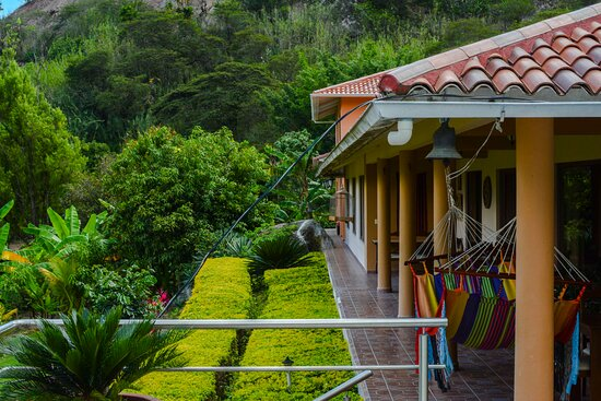 Santa Isabel, Ecuador: Views of our routes to the comedor. always nature around