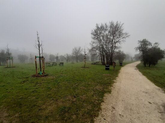 Parco Giardino Don Renzo Forconi