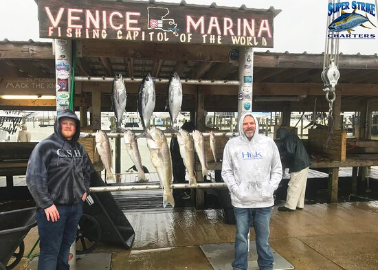 The Venice Sportsman's Lodge Crew went out with Capt. Scott King yesterday (3/1) and brought in these Golden Tile Fish and Blackfin Tuna! Beautiful catches!  If you would like to book your next fishing trip, give us a call at (985) 640-0772 or visit our website http://www.superstrikecharters.com