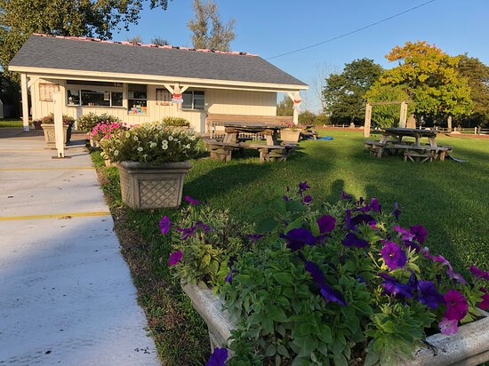 North Muskegon, MI: Summer flowers at Norm's Ice Cream
