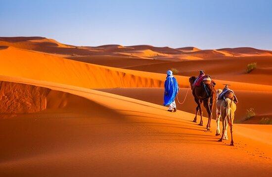 Sun Of Morocco Travel