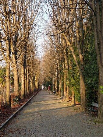 Torino - Parco Villa Genero (To)