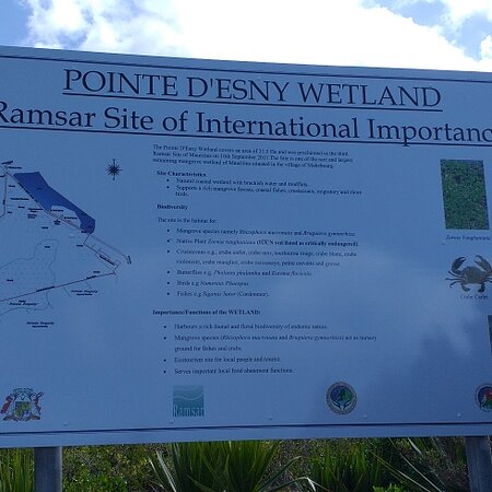 Pointe d'Esny : The Ramsar convention for the protection of nature lands and biodiverty.interesting wetlands with mangroves.on the other hand nice sea view of ile aux aigrettes.