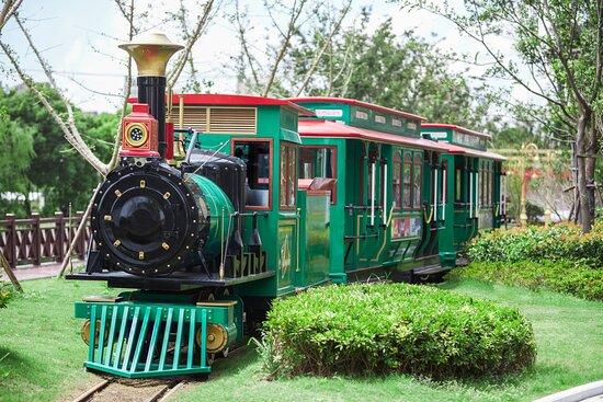 Outdoor Little Train