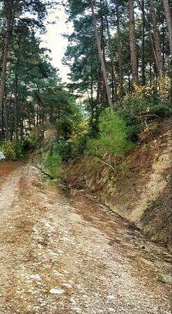 Kapikaya Canyon