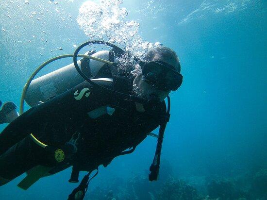 Full-Day Catalina Island Scuba Diving Tour from Punta Cana: Ya mas relajado como pez en el agua