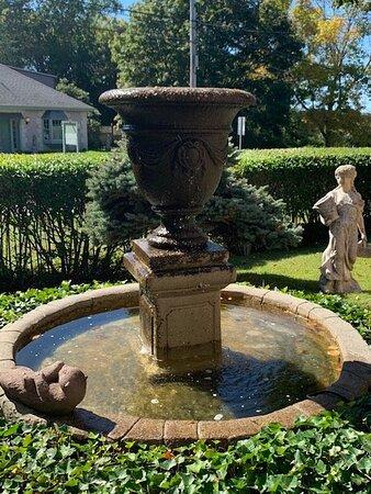 A look at the garden
