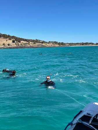 Kangaroo Island 75-Minute Ocean Safari Photo