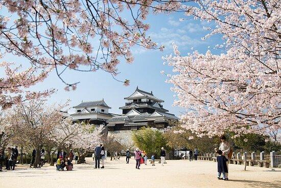 Private Historical Tour of Matsuyama Castle