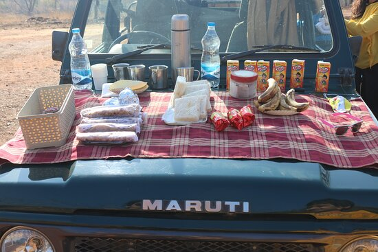 Outdoor Breakfast during safari drive