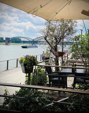 Auf unserer Terrasse haben sie einen fantastischen Blick auf den Rhein.