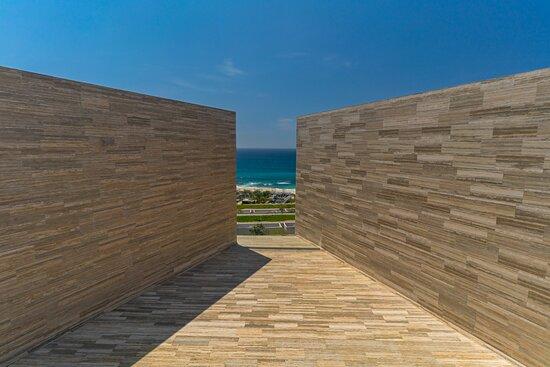 Blue Horizon - View Day