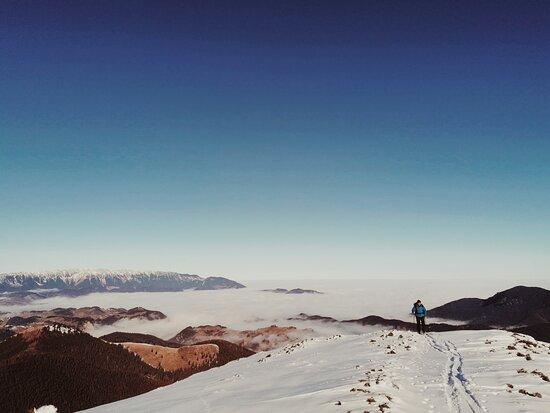 Brasov County, Rumania: Skins and skis, the views, the lunch, beautiful snow, laughter and sunshine. Best ingredients for a fab weekend. . . . #skitouringromania #loveandski #iubiresiski#skidetura #bucegimountains #carpathianmountains #beautifulmountains #romania #travelromania #family#familytime #adventuretime #carpathians #backcountryskiing #skirendo #tourdeski #outdoors #snowtime #2021 #weloveskitouring #skimountaineering #weekendvibes #february #stayoutside
