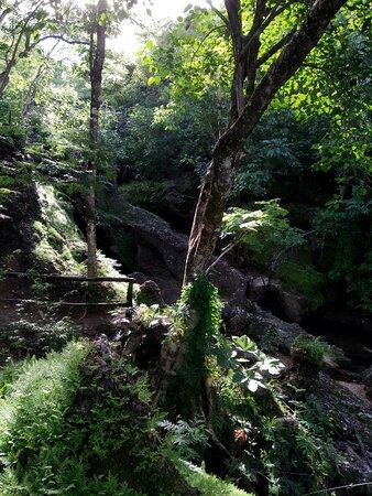 Colinas do Sul, GO: Gruta próxima à Cachoeira Santa Lázara