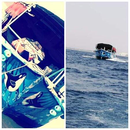 https://www.facebook.com/Discoveraqaba/  Sea trip.  We are honored to share with you the page to view our activities, programs and cruises, including glass boat tours, lunch programs, swimming activities and several programs.https://www.facebook.com/Discoveraqaba/ رحلة بحرية. ونتشرف بمشاركتكم للصفحه للإطلاع على نشاطاتنا وبرامجنا ورحلاتنا البحرية من جولات بالقارب الزجاجي وبرامج غداء ونشاطات سباحه وعدة برامج  للتواصل:0795661230