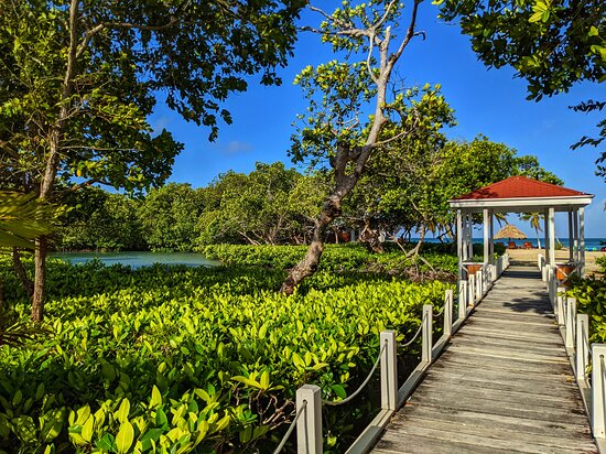 walk way to honeymoon suite and swimming pier from main part of island