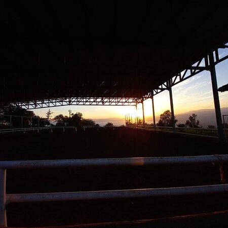 Gamla Farm