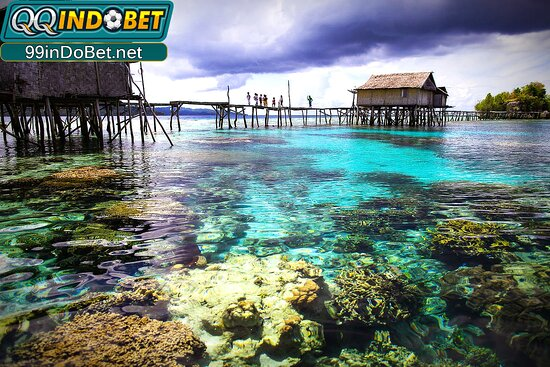 Kepulauan Togian, Indonesia: Gabung Sekarang juga di QQINDOBET satu - satunya situs judi bertaraf Internasional pertama di Indonesia Pendaftaran Gratis dengan Keuntungan Fantastis !! ► WWW, 99INDOBET ,NET ◄ Link Alternatif : http://172.104.185.114/ WA / Telegram : (+63)977-045-7788 Line : qqindobet IG : @qqindobetofficial Twitter : @QIndobet #agenjudionline #agenbolaterbaik #agencasino #agenslot #qqindobet #indobet #Agenbolaterbesar #agenbolaterpercaya #agenslotterpercaya #agenpoker #agentogel #togel #slot #judiindonesia