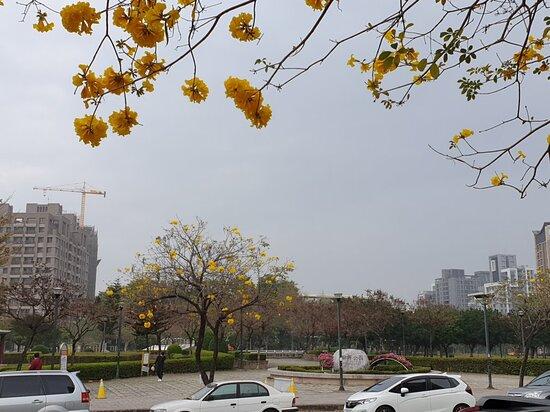 Buxing Park