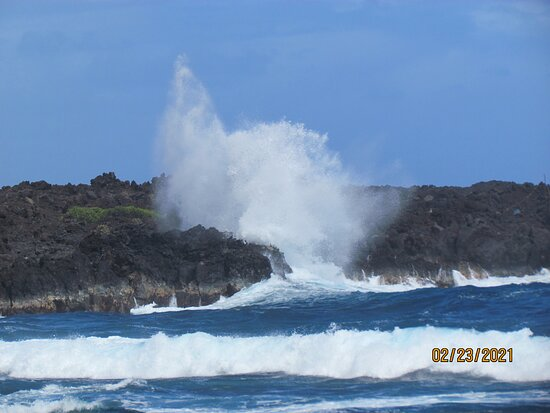 Small Group Big Island Twilight Volcano and Stargazing Tour: black sand beach- the waves and turtles were incredible