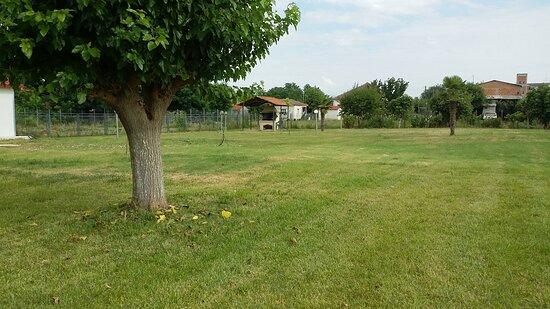 Palamas, Greece: Κήπος με γκαζόν