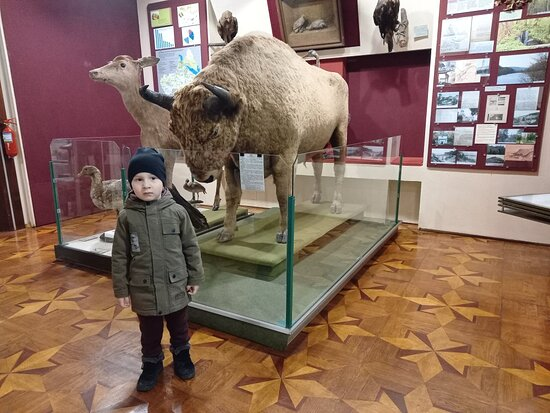 Cherkasy Regional Museum Of Local Lore